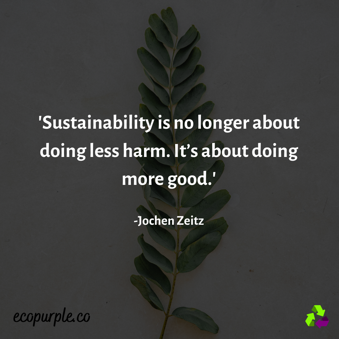 best-sustainability-quote