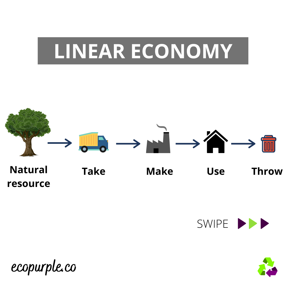 WHAT-IS-LINEAR-AND-CIRCULAR-ECONOMY