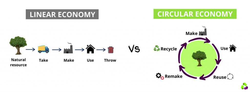 Sustainable-economy-circular-economy-vs-linear-economy-green-economy-ecopurple