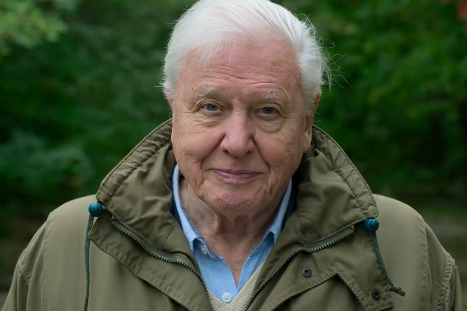 David-attenborough-a-life-on-our-planet-ecopurple
