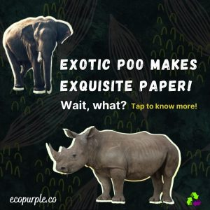 elrhino-elephant-and-rhino-dung-papers
