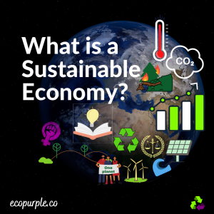 how-can-we-achieve-a-sustainable-economy-ecopurple