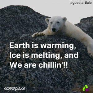 impacts-of-climate-change-ecopurple